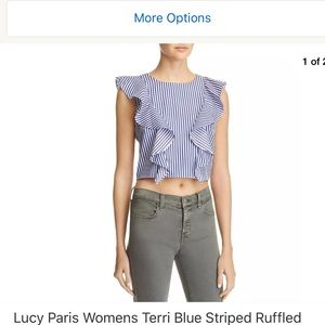 Lucy Paris Blue & white striped blouse large NWT